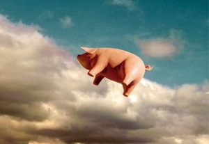 Pigs Fly in the Cloud